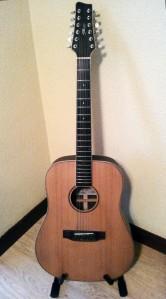 La guitarra de doce cuerdas.